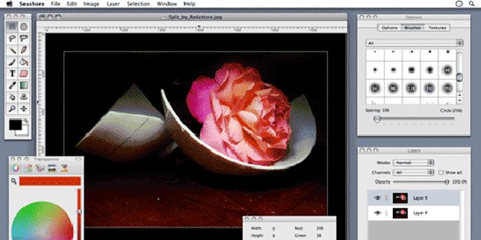Seashore-supports-file-types-like-TIFF-PNG-JPEG-BMP-GIF-PDF
