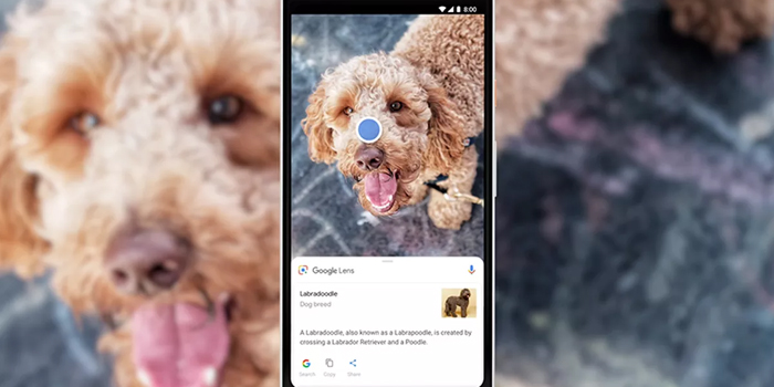 reverse-search-for-an-image-with-google-lens